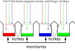 Photosites d'un capteur numérique d'une caméra vidéo ou photo